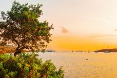 Yachts in Porto Rotondo at sunrise. In the Mediterranean Sea in Costa Smeralda in Sardinia, in Italy royalty free stock photos