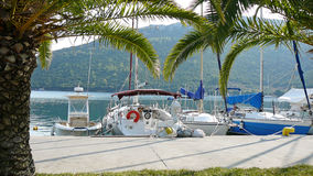 Yachts on the quay. Palm trees and yachts on the quay in Porto Koufo, Greece stock images