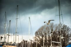 Yachts on the quay in Sopot. Poland Stock Photo
