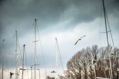 Yachts on the quay in Sopot Stock Photos