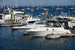 Yachts at Rockland, Maine Royalty Free Stock Photo