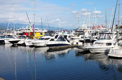 Yachts & sailboats in a marina Vancouver BC. Royalty Free Stock Photography