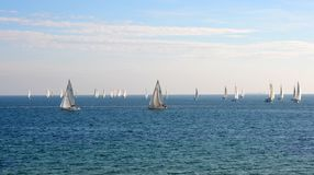 Yachts sailing on the bay Royalty Free Stock Photos