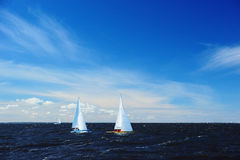 Yachts in sailing race Royalty Free Stock Photo
