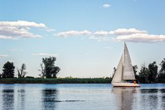 Yachts at sailing regatta. Beautiful ship yachts with white sails in the Dnieper river on a background of the blue sky with clouds Royalty Free Stock Image