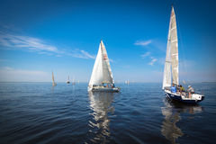 Yachts sailing regatta Royalty Free Stock Photo