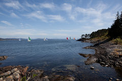 Yachts sailing in sea Stock Photography