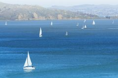 Yachts in San Francisco bay Royalty Free Stock Photos