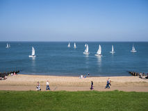 Yachts at the seaside in Whitstable, Kent, UK Royalty Free Stock Photo
