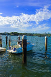 Yachts in Snails Bay at Birchgrove Sydney Stock Photography