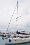 Yachts in the Sochi sea port Royalty Free Stock Images