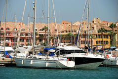 Yachts in Sotogrande marina. Yachts and boats in the marina with buildings to the rear, Puerto Sotogrande, Cadiz Province, Andalucia, Spain, Western Europe Royalty Free Stock Image