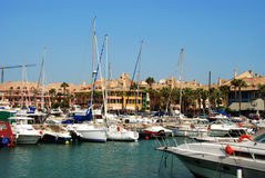 Yachts in Sotogrande marina. Yachts and boats in the marina with buildings to the rear, Puerto Sotogrande, Cadiz Province, Andalucia, Spain, Western Europe Royalty Free Stock Photography