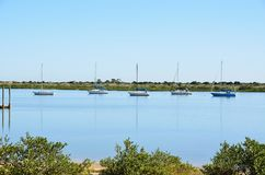 Yachts on St Augustine river Stock Photos