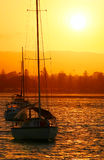 Yachts In The Sun Royalty Free Stock Photo