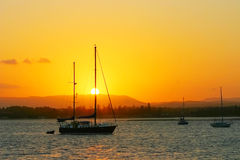 Yachts In The Sun. Yachts anchored at sunset with a blazing sun and sky Royalty Free Stock Images