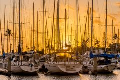 Yachts at sunset at Ala Wai Small Boat Harbor in Honolulu, Hawaii royalty free stock images