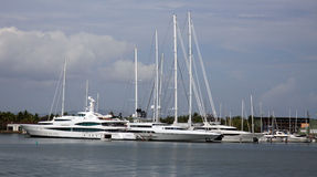 Yachts superbes à la marina Photo libre de droits