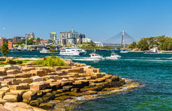 Yachts in Sydney Harbour as seen from Barangaroo Reserve Park Stock Photo