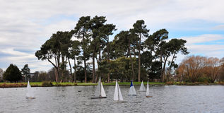 Yachts on Victoria Lake, Christchurch New Zealand Royalty Free Stock Photo