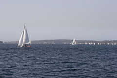 Yachts On The Water. Yachts out on the water for the day Royalty Free Stock Images