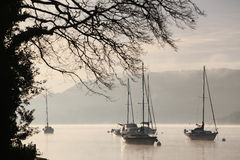 Yachts on Windermere Stock Image