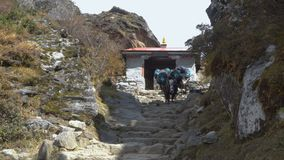 Yacs de la caravana en el Himalaya almacen de metraje de vídeo