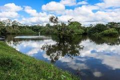 Yacuma flod Boliviansk djungel Arkivfoto
