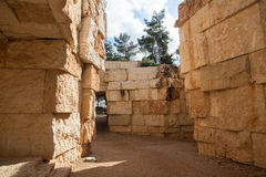 Yad Vashem Community Valley - Israel Stock Images