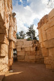 Yad Vashem Community Valley - Israel Royalty Free Stock Photography