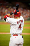 Yadier Molina Stock Photo