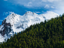 Yading. Mt. Chenresig in Yading nature reserve (Sichuan, China Royalty Free Stock Images