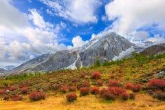 Yading-national Reserve Lizenzfreie Stockbilder