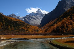 Yading National Reserve, China Royalty Free Stock Photo