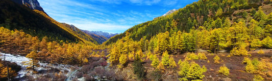 Yading Nature Reserve at autum Royalty Free Stock Images