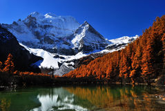 Yading pearl sea. Pearl sea is in the real shangri-la of western sichuan.altitude 4100 Stock Photography