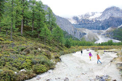 Yading scenery Royalty Free Stock Photo
