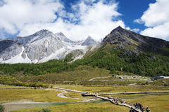 Yading scenery. The early autumn landscape of Yading in Daocheng, Sichuan, China Stock Photography