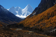 Yading scenic spots in china Royalty Free Stock Photos
