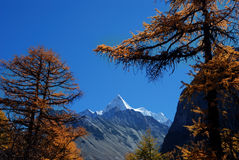 Yading scenic spots in china Stock Images