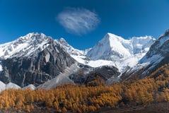 Yadingsnatuurreservaat in de herfst Stock Foto's