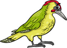 Yaffle bird animal cartoon illustration Stock Images