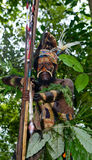 Yafi Papuan部落的战士在传统衣裳、装饰品和着色的 新几内亚海岛, 库存照片