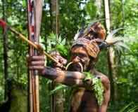 Yafi Papuan部落的战士在传统衣裳、装饰品和着色的 新几内亚海岛, 图库摄影