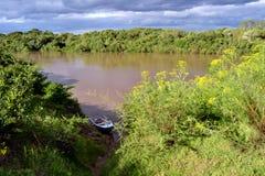 Yaguaron河和自然 免版税库存图片