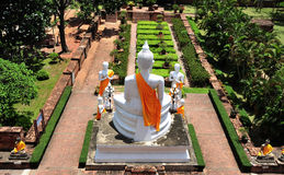 yai της Ταϊλάνδης chai ayutthaya mongkhon wat Στοκ εικόνα με δικαίωμα ελεύθερης χρήσης