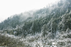 Yajiageng mountain snow-covered landscape Royalty Free Stock Photo