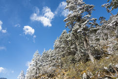 Yajiageng mountain snow-covered landscape Royalty Free Stock Photography