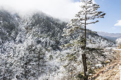 Yajiageng mountain snow-covered landscape Stock Images