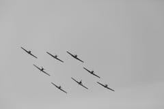 Yak-52 σχηματισμός Ι Στοκ Εικόνες